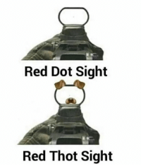 Thot, Reds, and Dank Memes: Red Dot Sight  Red Thot Sight
