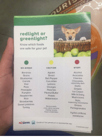 THIS IS SO IMPORTANT https://t.co/dqU6EqY08Z: red light or  greenlight?  Know which foods  are safe for your pet  STOP!  CAUTION  GO AHEAD  Apples  Alcohol  Bananas  Bread  Avocados  Beans  Blueberries  Cherries  Bell Pepper  Chocolate,  Cucumber  Carrots  especially dark  Kiwi  Lemons  Garlic  Oranges  Peas  Grapes  Pineapple  Peaches  Ice Cream  Peanut Butter  Pumpkin  Milk & Dairy  Raspberries  Potato  Mushrooms  Watermelon  Rice  Nuts,  Strawberries  especially macadamia  Sweet potatoes  Onions  Remove seeds.  Turkey  Pomegranates  cores, stems and other  choking hazards.  Feed in moderation.  Xylitol artificial  Sweetener  E Questions? Visit petsmd.com or download the app.  PETSMART  17-SERVICES-0327 THIS IS SO IMPORTANT https://t.co/dqU6EqY08Z