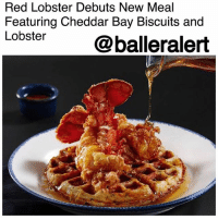 "Ass, Food, and Memes: Red Lobster Debuts New Meal  Featuring Cheddar Bay Biscuits and  Lobster @balleralert Red Lobster Debuts New Meal Featuring Cheddar Bay Biscuits and Lobster – blogged by @MsJennyb ⠀⠀⠀⠀⠀⠀⠀⠀⠀ ⠀⠀⠀⠀⠀⠀⠀⠀⠀ ""When he f*ck* me good, I treat his ass to Waffles and Lobster."" ⠀⠀⠀⠀⠀⠀⠀⠀⠀ ⠀⠀⠀⠀⠀⠀⠀⠀⠀ Everyone's favorite seafood restaurant is debuting a new dish, and yes, it includes the fan-favorite Cheddar Bay Biscuits. And no, this is not a drill, people. ⠀⠀⠀⠀⠀⠀⠀⠀⠀ ⠀⠀⠀⠀⠀⠀⠀⠀⠀ According to Pop Sugar, Red Lobster is bringing their world-famous Cheddar Bay Biscuits to the main course, as the restaurant debuts its new dish, lobster, and waffles. So, not only is the restaurant putting a spin on one of the most popular dish duos, but it is also incorporating its most popular food item-those damn Cheddar Bay Biscuits. ⠀⠀⠀⠀⠀⠀⠀⠀⠀ ⠀⠀⠀⠀⠀⠀⠀⠀⠀ The restaurant rolled out its new Lobster and Waffles meal on Monday, March 26, as part of this year's Lobsterfest. Now, in addition to the Lobster Truffle Mac & Cheese, the Dualing Lobster Tails and the Stuffed Tilapia with Langostino Lobster, you will be able to get the fired lobster with a Cheddar Bay Biscuit waffle. ⠀⠀⠀⠀⠀⠀⠀⠀⠀ ⠀⠀⠀⠀⠀⠀⠀⠀⠀ According to the publication, the meal will only run you about $20 bucks, depending on the location."