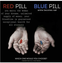 red pill blue pill: RED PILL  BLUE PILL  anime becomes real  you marry the woman  of your dreams, unlimited  supply of money, your  bloodline is guaranteed  exceptional health for  all eternity  WHICH ONE WOULD YOU CHOOSE?  FORWARD THIS TO ALL YOUR FRIENDS