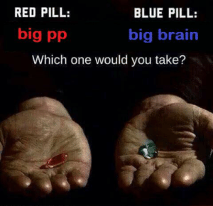 <insert caption here>: RED PILL:  BLUE PILL:  big pp  big brain  Which one would you take? <insert caption here>