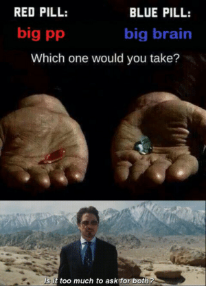 Big pp energy: RED PILL:  BLUE PILL:  big pp  big brain  Which one would you take?  Is it too much to ask for both? Big pp energy