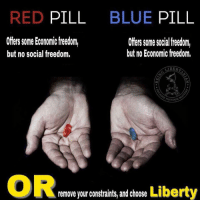 Just say no. (JG): RED PILL  BLUE PILL  Offers some Economicfreedm,  but no social freedom.  Ofers some social freedom,  but no Economic freedom.  ERDOM  OR  ty  remove your constraints, and choose Liber Just say no. (JG)