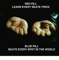 Which pill would you take ? 🤔 skatermemes: RED PILL  LEARN EVERY SKATE TRICK  BLUE PILL  SKATE EVERY SPOT IN THE WORLD Which pill would you take ? 🤔 skatermemes