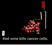 Memes, 🤖, and Cell: Red wine kills cancer cells.