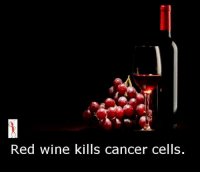 Memes, Wine, and 🤖: Red wine kills cancer cells.