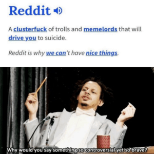 It is kinda true: Reddit  A clusterfuck of trolls and memelo rds that will  drive you to suicide.  Reddit is why we can't have nice things.  Why would you say something so controverslal yet so brave? It is kinda true