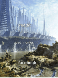 Facebook, Memes, and Reddit: reddit  dead memes  facebook Imagine being so unintellectual you have to look at memes on Facebook via /r/memes http://bit.ly/2LCuuFX