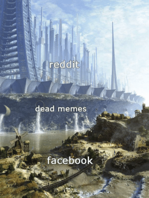 Dank, Facebook, and Memes: reddit  dead memes  facebook Imagine being so unintellectual you have to look at memes on Facebook by IVSwarm MORE MEMES