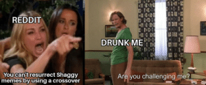 Drunk, Memes, and Reddit: REDDIT  DRUNK ME  You can't resurrect Shaggy  'memes by using a crossover  Are you challenging me? Shaggy strongk