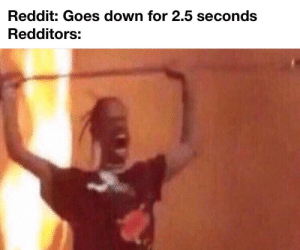 Anarchy Ensues: Reddit: Goes down for 2.5 seconds  Redditors: Anarchy Ensues