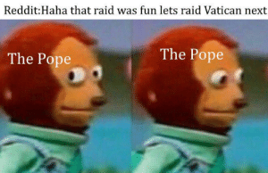 Pope Francis, Reddit, and Vatican: Reddit:Haha that raid was fun lets raid Vatican next  The Pope  The Pope meirl