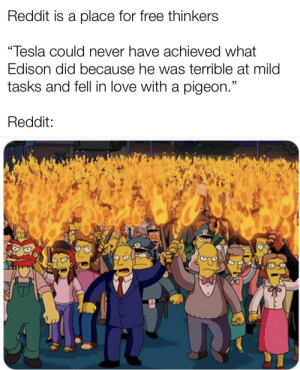 """Edison bad Tesla dumb: Reddit is a place for free thinkers  """"Tesla could never have achieved what  Edison did because he was terrible at mild  tasks and fell in love with a pigeon.""""  Reddit: Edison bad Tesla dumb"""