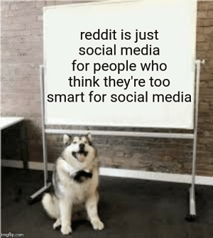 It's true, but he shouldn't say it: reddit is just  social media  for people who  think they're too  smart for social media  imgflip.com It's true, but he shouldn't say it