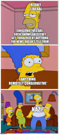 "News, Reddit, and Fox News: REDDIT  LIBERAL  CONSERVATIVESARE  SUCHSNOWFLAKES, THEY  GETTRIGGERED BY ANYTHING  FOX NEWS DOESNT TELLTHEM  ANYTHING  REMOTELY CONSERVATIVE*  NAZI ""Snowflakes"""