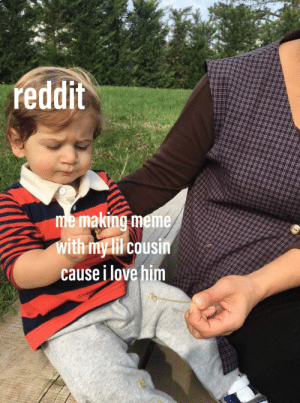 Love, Meme, and Reddit: reddit  me making meme  with my lil cousin  cause i love him i love everyone