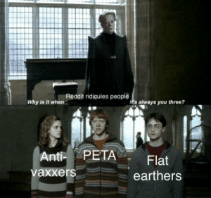 Dank, Memes, and Reddit: Reddit ridicules people  Why is it when  t's always you three?  Anti PETA  vaxxers  Flat  earthers Triple threat by KoolDood91 MORE MEMES