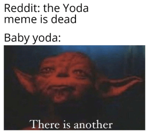 Yoda is gonna beat the shit out of baby yoda for this: Reddit: the Yoda  meme is dead  Baby yoda:  There is another Yoda is gonna beat the shit out of baby yoda for this