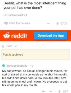 Chested: Reddit, what is the most intelligent thing  your pet had ever done?  u/ThatTreeWillFal  4243 Comments  6778  reddit Download the App  Best  Post is archived  ihavespaceballs 1y  My cat yawned, so I stuck a finger in his mouth. He  sort of stared at my curiously as he shut his mouth,  but didn't bite down hard. A few minutes later, he's  sitting on my chest and I yawn. He proceeds to put  his whole paw in my mouth  1657