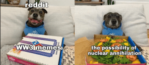 Are WW3 memes dead yet?: reddit  WW3 memes  the possibility of  nuclear annihilation  F SOMMER Are WW3 memes dead yet?