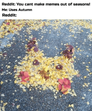 Dank, Memes, and Reddit: Reddit: You cant make memes out of seasons!  Me: Uses Autumn  Reddit: Totally OC by Kelevra3110 MORE MEMES