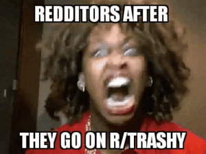 Angry: REDDITORS AFTER  THEY GO ON R/TRASHY Angry