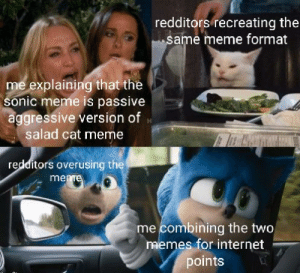 Pepe is the meme of the decade: redditors recreating the  same meme format  me explaining that the  sonic meme is passive  aggressive version of  salad cat meme  redditors overusing the  meme  me combining the two  memes for internet  points Pepe is the meme of the decade