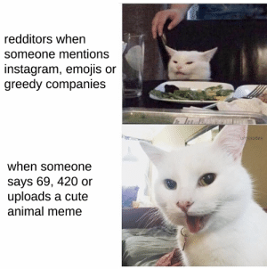 Summarize it up nicely: redditors when  someone mentions  instagram, emojis or  greedy companies  u/mixodes  when someone  says 69, 420 or  uploads a cute  animal meme Summarize it up nicely