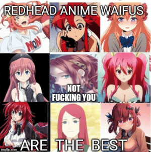Anime, Fucking, and Best: REDHEAD ANIME WAIFUS  MON  NOT  FUCKING YOU  ARE THE BEST  imgflip.com I can't agree more