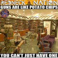 Amen to that!: REDNECK A NA  N  GUNS ARE LIKE POTATO CHIPS  ECKNAT  REDNECKNATIONGEAR-COM  YOU CANT JUST HAVE ONE Amen to that!