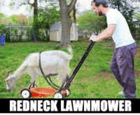 Redneck: REDNECK LAWNMOWER