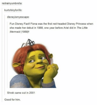 funny disney: redrainyumbrella:  kurtofskyforlife:  disney ismyescape:  Fun Disney Fact! Fiona was the first red-headed Disney Princess when  she made her debut in 1988, one year before Ariel did in The Little  Mermaid (1989)!  Shrek came out in 2001  Good for him.