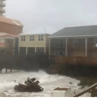 Memes, Beach, and Florida: @Regran_ed from @knx1070 - Hurricane Michael makes landfall with 155 mph winds and a near Category 5. This video captures Panama City Beach, Florida. It's the strongest storm to hit the Panhandle in recorded history. hurricane florida - regrann