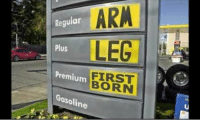 Memes, 🤖, and Arm: Regular  ARM  LEC  Plus  Premium  Gasoline  FIRST  BORN