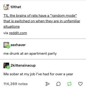 "Go crazy aaaaaa go stupid aaaaaa: REI  TILtilthat  IL  TIL the brains of rats have a ""random mode""  that is switched on when they are in unfamiliar  situations  via reddit.com  sexhaver  me drunk at an apartment party  2kittensinacup  Me sober at my job I've had for over a year  114,389 notes Go crazy aaaaaa go stupid aaaaaa"