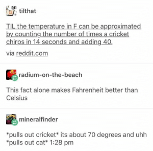 20+ Funny Tumblr Posts That Will Take You To Fun Tumblr-Land (Episode #197): REI  Ttilthat  IL  TIL the temperature in F can be approximated  by counting the number of times a cricket  chirps in 14 seconds and adding 40  via reddit.com  radium-on-the-beach  This fact alone makes Fahrenheit better than  Celsius  mineralfinder  *pulls out cricket* its about 70 degrees and uhh  *pulls out cat* 1:28 pm 20+ Funny Tumblr Posts That Will Take You To Fun Tumblr-Land (Episode #197)