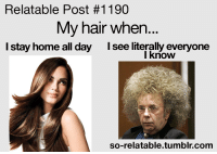 Relatable: Relatable Post #1190  My hair when...  I stay home all day  I see literally everyone  I know  so-relatable tumblr com