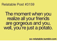 Relatible Post: Relatable Post #3159  The moment when you  realize all your friends  are gorgeous and you,  well, you're just a potato  so-relatable tumblr com