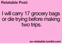 Memes, Tumblr, and Relatable: Relatable Post:  I will carry 17 grocery bags  or die trying before making  two trips  so-relatable.tumblr.com