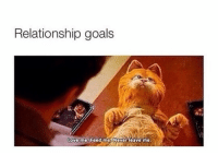 Funny, Goals, and Love: Relationship goals  Love me.  feed meNever leave me My personal ig @iamnochilll