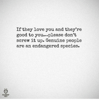 Genuinity: RELATIONSHIP  RULES  If they love you and they're  good to you...please don't  screw it up. Genuine people  are an endangered species