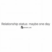 Funny, Memes, and Relationship Status: Relationship status: maybe one day  @sarcasm only SarcasmOnly