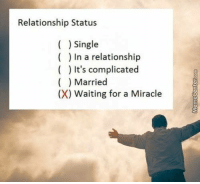 Memes, Relationships, and Relationship Status: Relationship Status  Single  In a relationship  It's complicated  Married  (X) Waiting for a Miracle Any minute now...