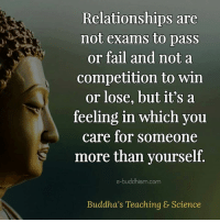 Buddhism: Relationships are  not exams to pass  or fail and not a  competition to win  or lose, but it's a  feeling in which you  care for someone  S more than yourself  e-buddhism com  Buddha's Teaching & Science