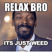 When people refer to potheads as drug addicts.: RELAX BRO  ITS JUST WEED When people refer to potheads as drug addicts.