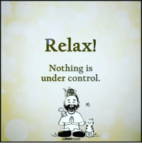 The Mind Unleashed: Relax!  Nothing is  under control.  sg  THEMINDUNLEASHED