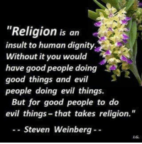 """Memes, Good, and Insulting: """"Religion is an  insult to human dignity.  Without it you would  have good people doing 3e  good things and evil  people doing evil things.  But for good people to do  evil things that takes religion.  Steven Weinberg"""