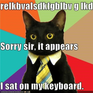 25 Business Cat Memes #sayingimages #businesscatmemes #businesscat #memes #funnymemes: relkbvalsdkigblby g lkd  Sorry sir, it appears  I sat on mykeyboard.  ICANHASCHEE2EURGER COM 25 Business Cat Memes #sayingimages #businesscatmemes #businesscat #memes #funnymemes