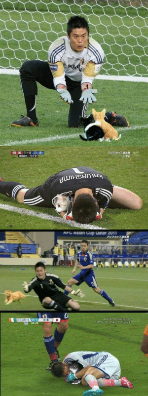 milkchocolatepuppies: volcainist: Goalkeepers' balls get photoshopped into cats.  This is so natural. Like i didn't question it : REM   上韓国1-2  日本  5:12  アジアカップ準決勝  LIVE Wsahi   ArC ASian Cup Qatar 2011  アジアカップ漢決線  LIVE  LE  5   FIFA ワールドカップ  1次リーグ グループC LIVE  コートジポワール0-1  前半  日本  C  45:25 milkchocolatepuppies: volcainist: Goalkeepers' balls get photoshopped into cats.  This is so natural. Like i didn't question it
