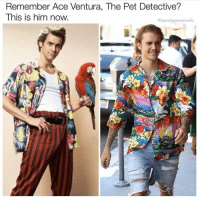 Ace Ventura, Funny, and Ace: Remember Ace Ventura, The Pet Detective?  This is him now  @openlygayanimals Slow, hard clap for @openlygayanimals